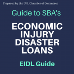 EIDL_GUIDE_(1)